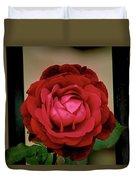 Red Rose  V2 Duvet Cover