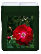 Red Rose With Buds Duvet Cover