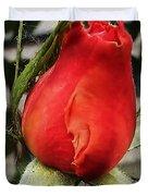 Red Rosebud  Duvet Cover