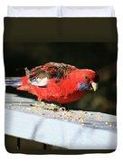 Red Rosella Duvet Cover