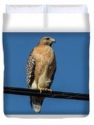 Red-shoulder Hawk Duvet Cover