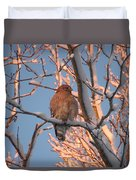 Red-shouldered Hawk Duvet Cover