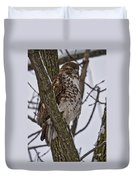 Red Shouldered Hawk - Madison - Wisconsin Duvet Cover