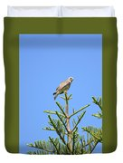 Red-shouldered Perch Duvet Cover
