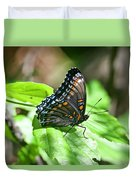 Red-spotted Purple 4172 Duvet Cover
