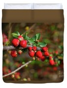 Red Spring Buds Duvet Cover