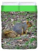 Fox Squirrel 2 Duvet Cover