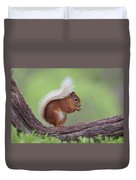 Red Squirrel Curved Log Duvet Cover