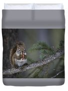 Red Squirrel Having Lunch Duvet Cover