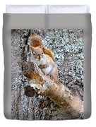 Red Squirrel Maine Duvet Cover