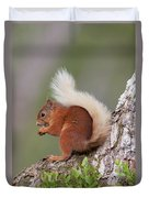 Red Squirrel On Tree Duvet Cover