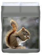 Red Squirrel On Wooden Fence II Duvet Cover