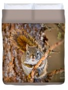 Red Squirrel Pictures 144 Duvet Cover