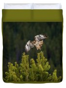 Red-tail Flight At Sunset Duvet Cover