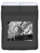Red Tail Hawk In Black And White Duvet Cover by Deleas Kilgore