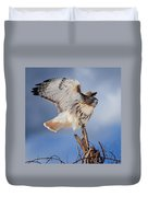 Red Tail Hawk Perch Duvet Cover