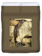Red-tailed Hawk 5 Duvet Cover