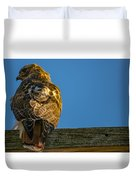 Red Tailed Hawk  IIi  Duvet Cover