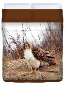 Red Tailed Hawk In The Field Duvet Cover