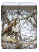 Red Tailed Hawk,  Duvet Cover