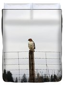 Red Tailed Hawk On The Lookout Duvet Cover