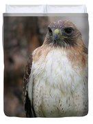 Red-tailed Hawks Duvet Cover
