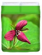 Red Trillium Wildflower Duvet Cover