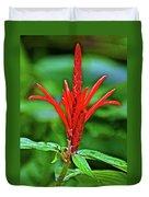 Red Tropical Flower In Huntington Botanical Gardens In San Marino-california  Duvet Cover