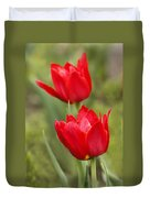 Red Tulips In A Meadow Closeup Sunny Spring Day Duvet Cover