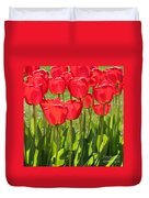 Red Tulips Square Duvet Cover
