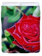 Red Velvet Rose Duvet Cover