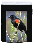 Red-winged Perch Duvet Cover