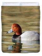 Redhead On Sunny Pond Duvet Cover
