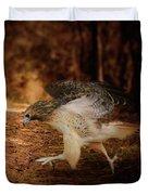 Redtail Morning Run Hawk Art Duvet Cover