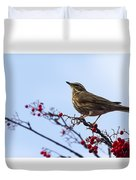 Redwing  - 2 Duvet Cover