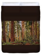 Redwood Forest Landscape Duvet Cover