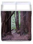Redwood Grove Duvet Cover