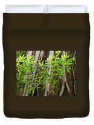 Redwood Tree Art Prints Baslee Troutman Duvet Cover