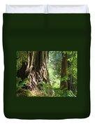Redwood Tree Art Prints Redwoods Forest Duvet Cover