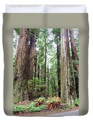 Redwood5 Duvet Cover