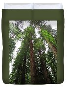 Redwood6 Duvet Cover