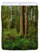 Redwoods And Ferns Duvet Cover