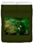 Reef Life Off Hawaii Duvet Cover