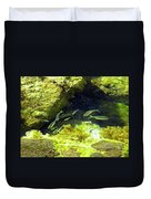Reef Tide Pool Duvet Cover