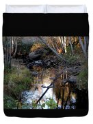 Reflect Upon Autumn Duvet Cover