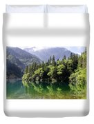 Reflections On Arrow Bamboo Lake Duvet Cover