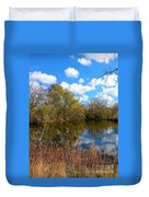 Reflective Cloudy Palatine, Il,  Library Pond Duvet Cover