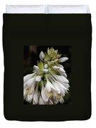 Renaissance Lily Duvet Cover