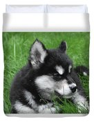 Resting Alusky Puppy Laying In Green Grass Duvet Cover