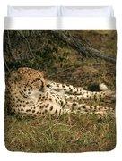 Resting Cheetah Duvet Cover